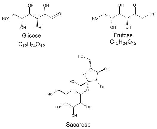 glicose-frutose-sacarose